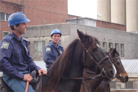 piet_police